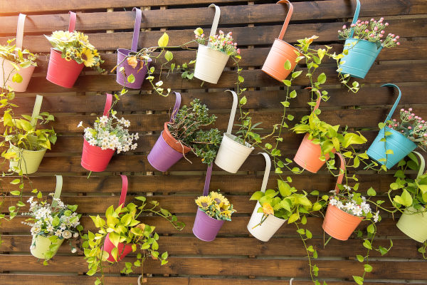 kleine-terrasse-bepflanzen